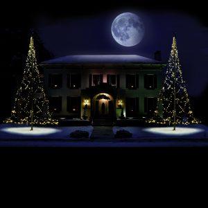 Fairybell 600CM-720LED Dark winter house snow 2 trees